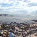 Seahouses - Grace Darling