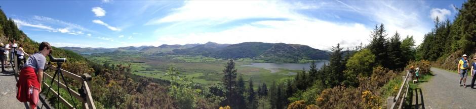 Bassenthwaite Osprey view