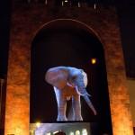 Durham Lumiere 2013